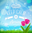 Keep calm its spring vector image