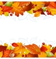 Autumn background with fall leaf vector image