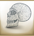 decorated skull vector image vector image