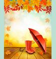 nature autumn background with colorful leaves and vector image