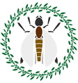 insect in ring vector image vector image