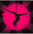 Sexy pole dancer - vector image