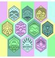 Mountain badges linear 1mono vector image
