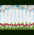 spring landscape with tulips and fence vector image