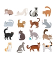 Set of Icons with Cats Flat Design vector image