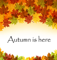Autumn leaves text frame vector image vector image