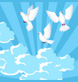 background with white doves beautiful pigeons vector image