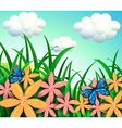 Butterflies and flowers at the garden vector image