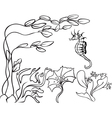 seaweed and sea horse vector image