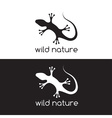 lizard design template vector image