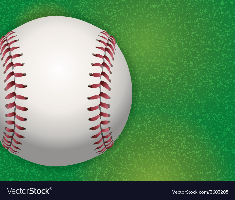 Baseball on grass field vector