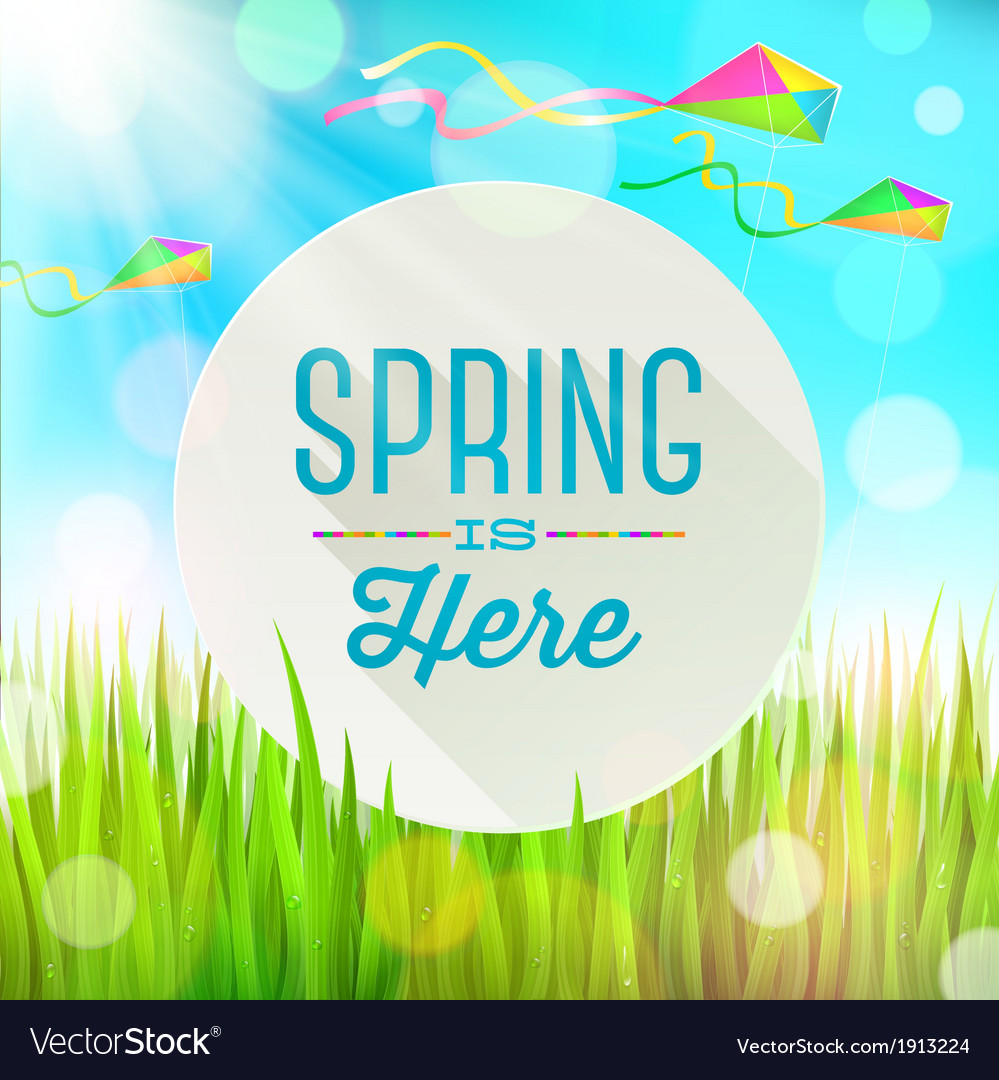 Spring greeting banner on landscape with kites vector