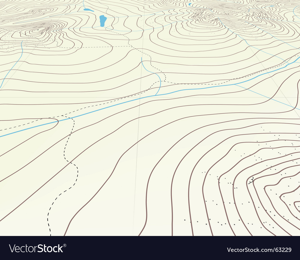 Contour background vector