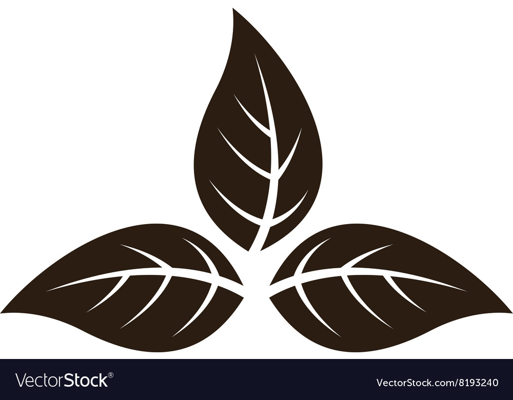 Tobaccoleaves380x400 vector