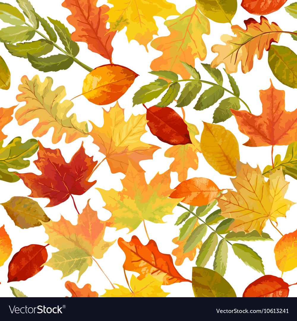 Autumn leaves background  seamless pattern vector