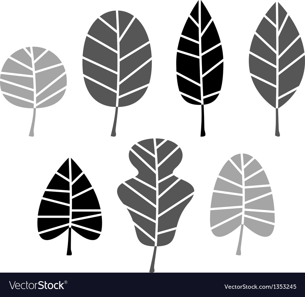 Black leaves silhouette set isolated on white vector