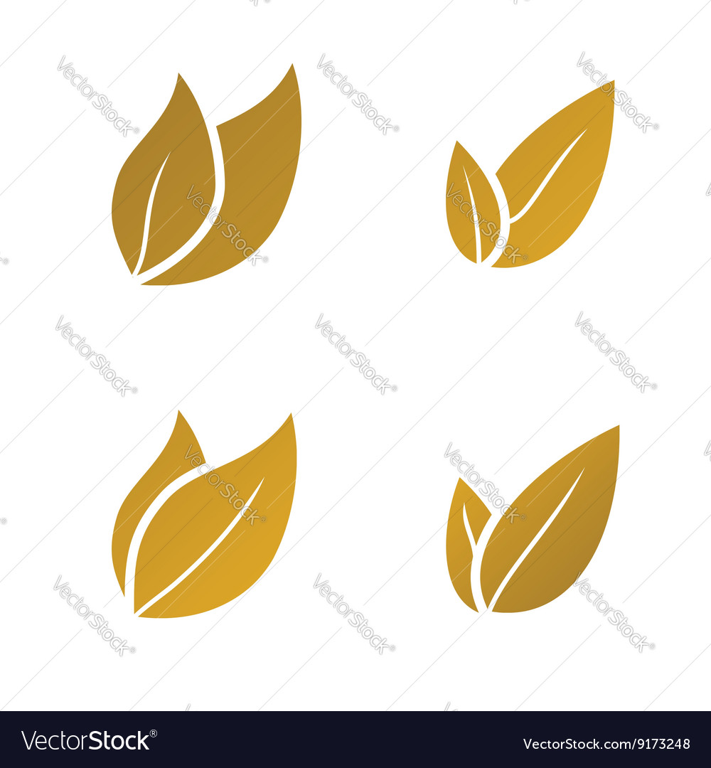 Gold leaf icon set vector
