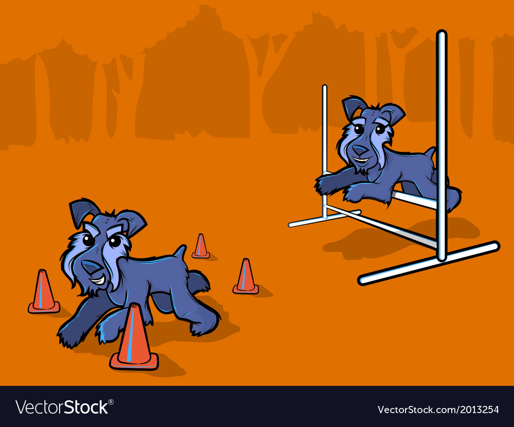 Dog agility training cartoon vector