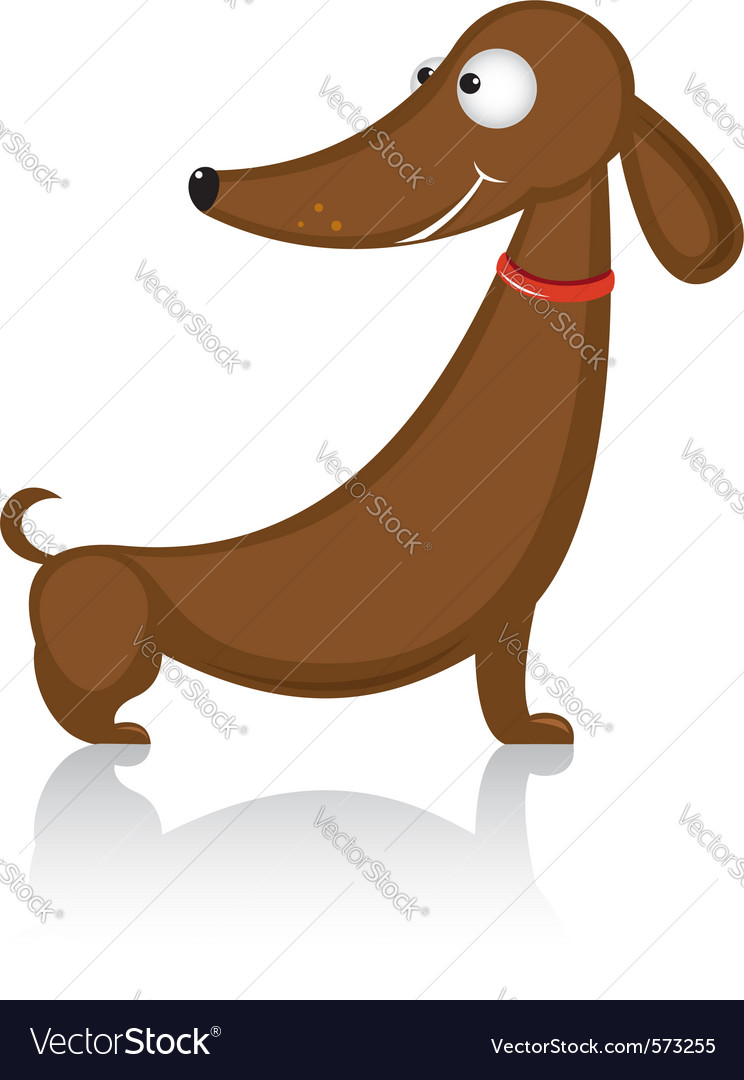 Cartoon dachshund dog vector