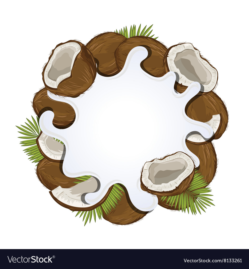 Yogurt splash isolated with coconut vector