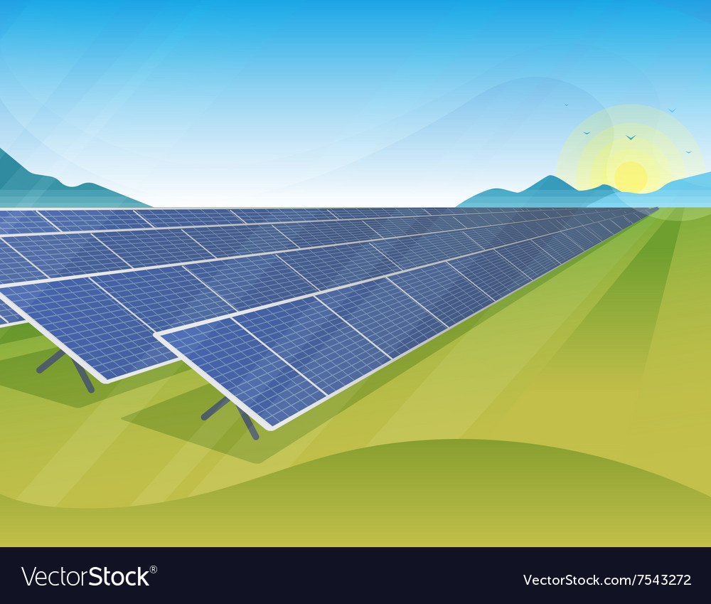 Solar panels farm in green fields during sunrise vector