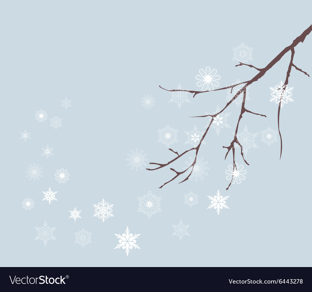 Snow winter vector