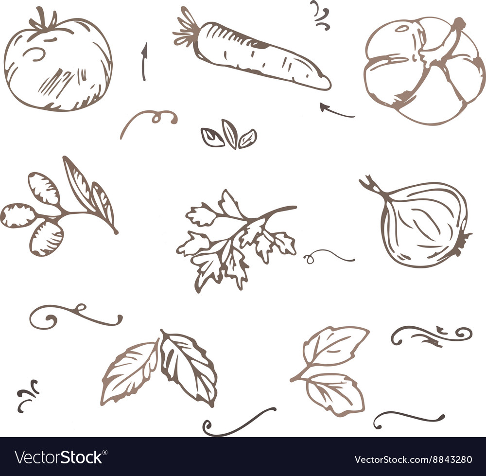 Doodle vegetables sketch vector