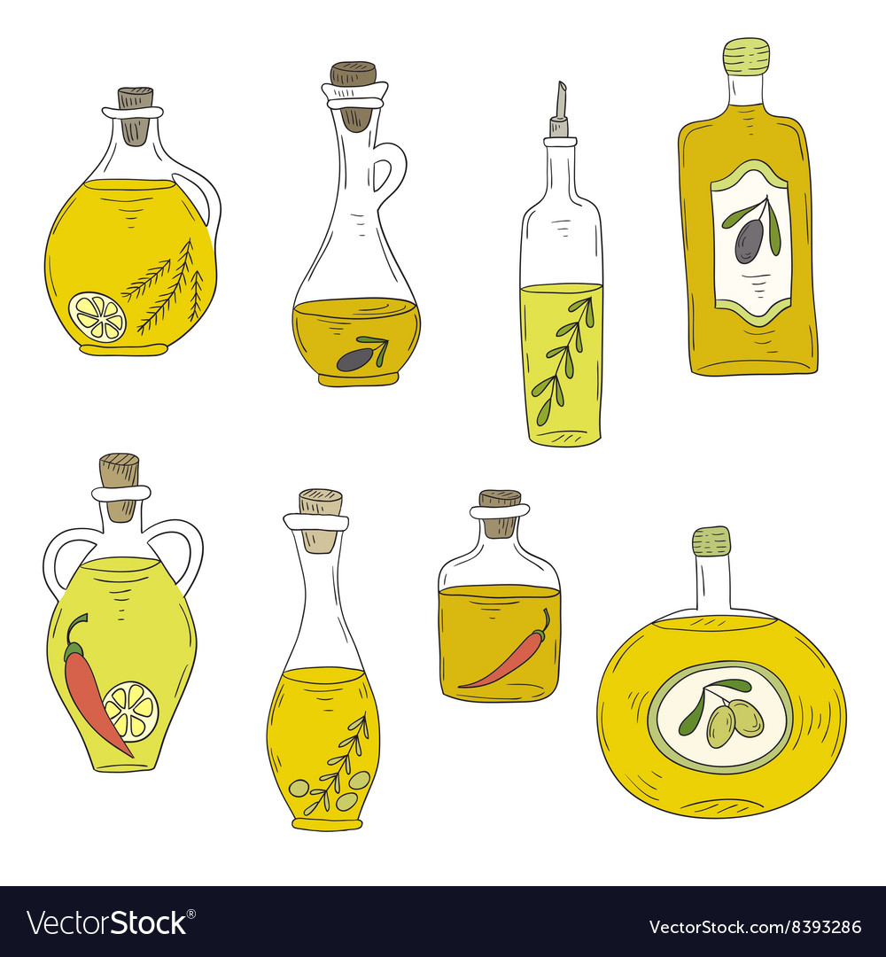 Handdrawn bottle of oil and olives vector