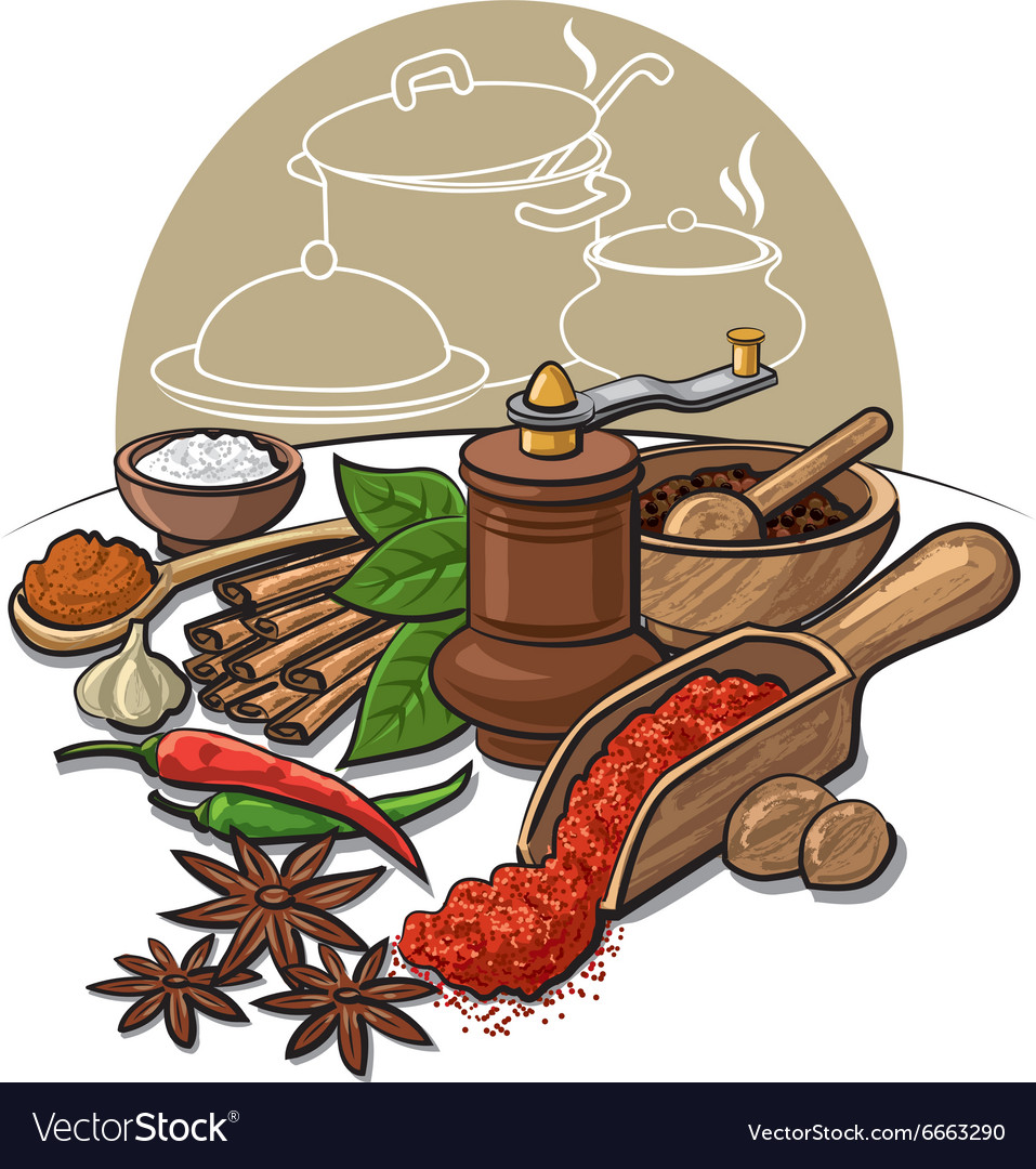 Spices and flavors vector