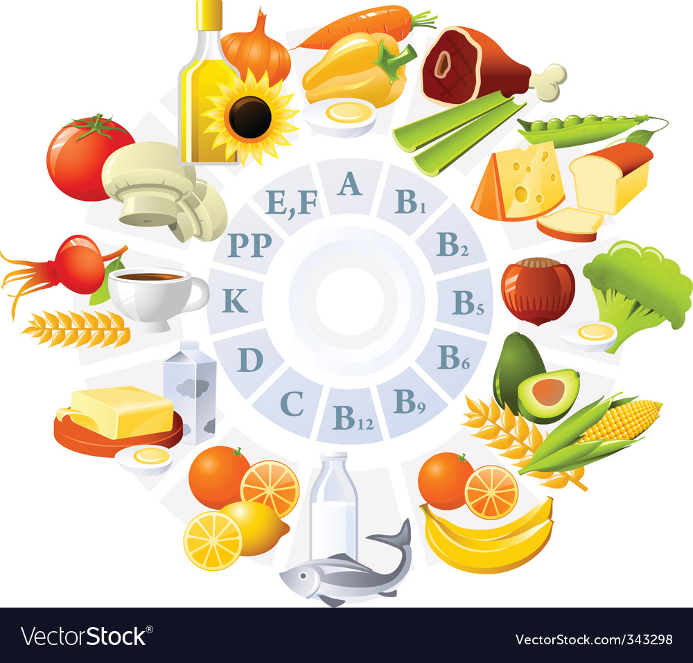 Table of vitamins vector