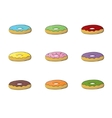 Donuts set isolated Colorful donuts vector image