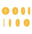 bitcoin gold coin at different angles for vector image