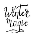 winter lettering on white background vector image