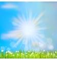 Summer grass in sun light EPS 10 vector image