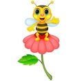 Cute little bee cartoon on red flower vector image