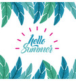 hello summer flat vector image