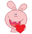 Pink Rabbit Laughing And Holding a Red Heart vector image