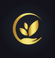 save ecology bio nature gold logo vector image