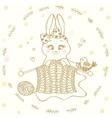 bunny knitting needles vector image