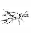 abstract silhouette of lobster vector image
