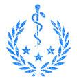 medical laurel wreath grunge icon vector image