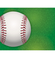 Baseball on Grass Field vector image