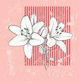 Flower Lily Hand drawn vector image