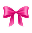 pink bow cartoon isolated vector image