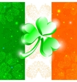 Happy Patrick day flag vector image