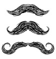 Doodle mustaches handlebar vector image