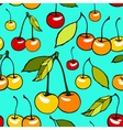 Seamless pattern with decorative sweet cherries vector image