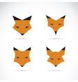 fox face design on white background wild animals vector image