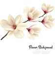 Flower background with blossom branch of white vector image