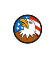 American Bald Eagle Head Looking Up Flag Circle vector image